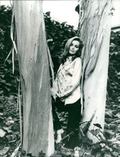 A woman striking a pose in between of  tall trees.