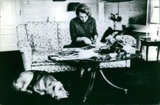 Princess Beatrix of the Netherlands making a photo album with her dog.