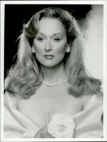 "Actress Meryl Streep in the movie ""A Life and Desires of a She-Devil"""
