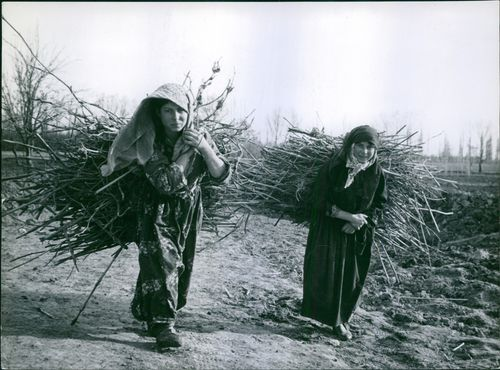 Women carrying their harvest.