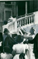 Prince Rainier picks up when Grace Kelly releases a white pigeon on the farm to the palace of Monte Carlo
