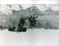 1961 A photo of soldiers holding gun and running in a grassland.