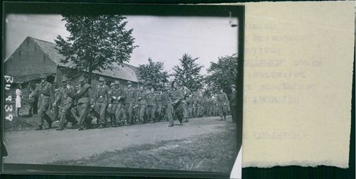 German parachutist prisoners being marched down a road at Helchteren during World War II