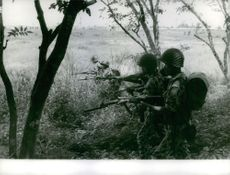 Soldiers sneaking in the forest.