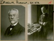 Portrait of Swedish hortologist Rudolf Abelin with an array of fruits from his own garden.