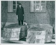 Professor Hultén with a section of the California giant tree Sequoia Gigantea (mammoth tree) located outside the National Museum