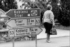 Road viewer in Trittenheim in the Moselle valley.