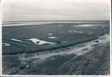 Breydon Water aerial view