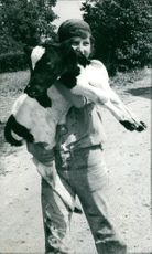A young girl holding a calf.