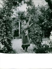 Woman plucking flower from tree.