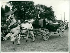 Animals: Horse: Transport: R.S.P.C.A. Gymkhana, Horse Parade and Dog Show at Yarmouth.