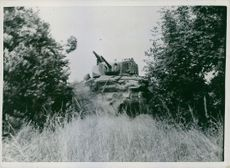U.S. tank armed with hedge-biting teeth.