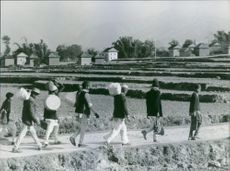 Men are walking in the middle of the farm in Nepal. 1970