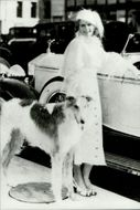 Jean Harlow and her dog next to her Rolls Royce sold for $ 200,000 at a veteran car auction in Paris after her death.