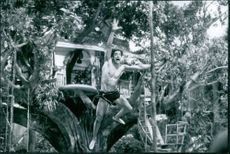 Brendan Fraser in a scene from the movie George of the Jungle.