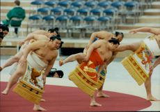 Japanese summons opened the opening of the 1998 Winter Olympics.