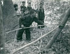 Trap preparing for enemy by a Viet Cong member during Vietnam War