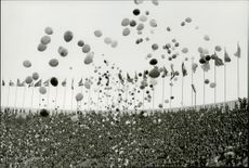 Hundreds of balloons are released into the air while a full stadium is watching during the Olympics