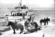 """When the """"Christmas boat"""" M / S Ramsö berthed at Karklö bridge the farmers met up with horse and sleigh."""