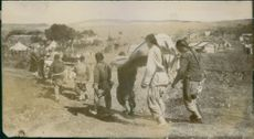 Japanese war casualties being carried after the war on Port Arthur.