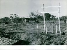 Destroyed farm land during the Vietnam War.