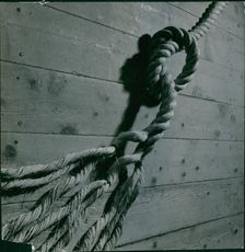 Close up of a rope tied on the wooden structure.