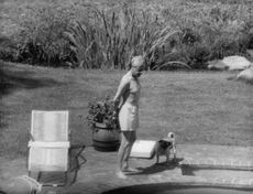 Duke of Windsor looking into the pool.
