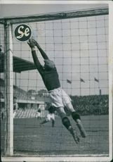 Goalkeeper trying to save goal for his team.