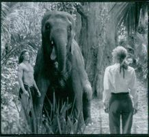 1997  A scene from the television series George of the Jungle.