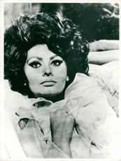 Sophia Loren Film actress.