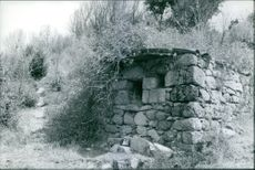 A house made of stone in the middle of the forest. 1969