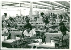 Sri Lanka: Women's clothing factory working for one dollar in salary