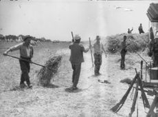 men cleaning in the farm.1962