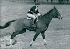 Princess Anne, daughter of the Queen and Prince Philip, riding at the Daihatsu Brig stock horse trials near Kettering, Northants.