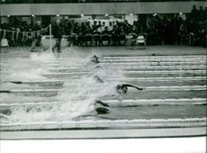 Swimmers while racing during a competition.