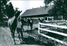 Women photographed with horses.