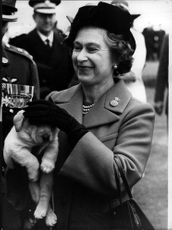 Queen Elizabeth is a big animal lover. The Labrador Puppy Kimberley hits has his new math for the first time.