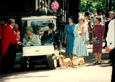 Queen Elizabeth, Queen Elizabeth, at the official celebration of her 95th birthday. Her corgies were of course with.