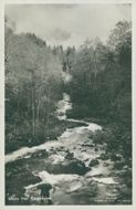 Sater. Motif from Säterdalen. Postcard black and white