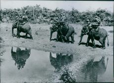 Soldiers enjoying elephant riding in a field.