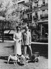 Duke of Windsor and his wife with dogs.