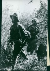 Vietnamese soldiers walking through the woods.  Taken - 5 Sept. 1959