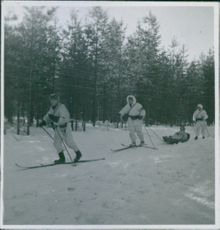 Finnish medic soldiers pulling the injured soldiers on snow during the Finnish-Russian War 1939-1940.