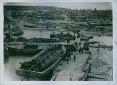 A scene of a port during war time where people are busy to pull down some horses those are being carried by boat during WWI.