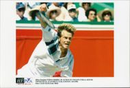 Tennis player Stefan Edberg.