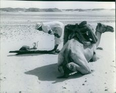 Man with his camel in the desert.