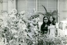 Three women standing beside the flowers, smiling.