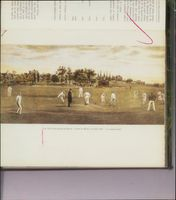 Cricket (1982) game.