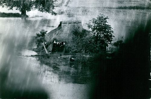 Vetnam A PICTURE OF A HUT
