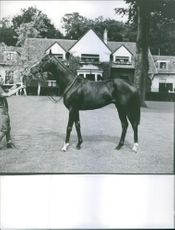 E. Pollet standing and holding snaffle of a horse. Photo taken on July 10, 1963.